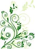 Green floral ornament. Green floral element for design royalty free illustration