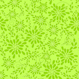Green floral pattern. Stock Image