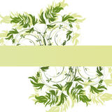 Green floral pattern on white background Royalty Free Stock Images