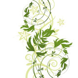 Green floral pattern on white background Royalty Free Stock Photo