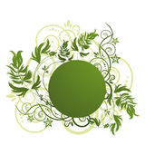 Green floral pattern on white background Stock Photos