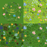 Green floral round and seamless patterns set Royalty Free Stock Image