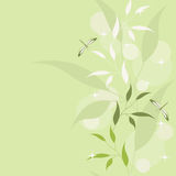 Green floral seamless. Stock Photography