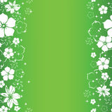 Green floral seamless background Royalty Free Stock Images