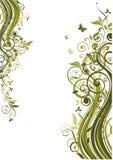 Green floral template. Vintage template with floral olive design vector illustration