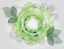 Green Floral Vortex. A circular shape leaf vortex. An abstract background Royalty Free Stock Image