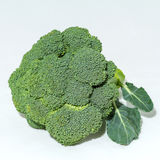 Green florets of broccoli. On white background Royalty Free Stock Image