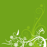 Green Flourish Background Royalty Free Stock Photos