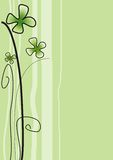 Green flower Royalty Free Stock Images