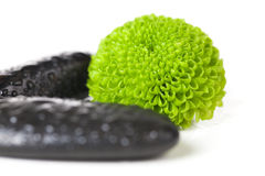Green Flower. S with black stones isolated on white royalty free stock images