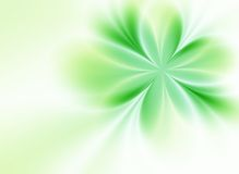 Green flower. Beautiful green flower on a green background Stock Photo