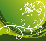 Green flower background Stock Image