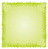 Green flower background Royalty Free Stock Images