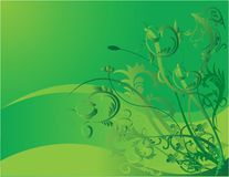 Green Flower Background royalty free stock photo