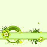 Green flower  background. Stock Photography