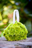 Green flower ball Royalty Free Stock Image