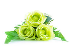 Green flower bouquet on white background Royalty Free Stock Photos