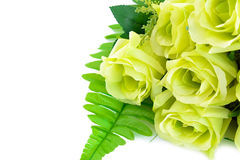 Green flower bouquet on white background Royalty Free Stock Photography