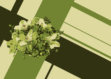 Green flower in cross. Fresh retro vegetables in cross Royalty Free Stock Photos