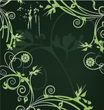 Green flower decoration Stock Photography