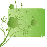 Green flower ecological design Royalty Free Stock Photography