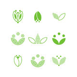 Green flower logo. Green flower and leaves logo set. Simple ecology symbols isolated on white background. Stock vector illustration Stock Image