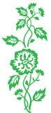 Green flower pattern Royalty Free Stock Image