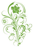 Green flower pattern. Drawing of green flower pattern in a white background Royalty Free Stock Photography