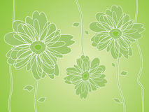Green Flower silhouettes background Stock Images