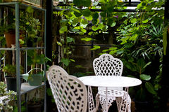 Green flower on vase pot in garden make feel fresh and relax Stock Photo