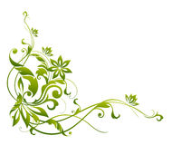 Green flower and vines pattern. Drawing of green flower pattern in a white background Royalty Free Stock Photography