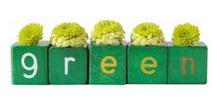 Free Green Flowers Stock Photography - 4299442