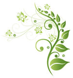 Green flowers royalty free illustration