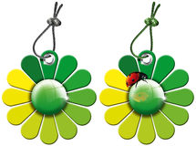 Tags Flowers - 2 Items. Green Flowers  - 2 daisies with green petals hanging from steel cable Royalty Free Stock Photo