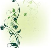 Green flowers decoration. With place for text Royalty Free Stock Images