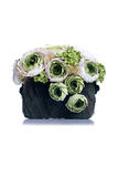 Green flowers in a green pot on isolated background with reflect Royalty Free Stock Images
