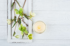 Green flowers and lit candle. SPA composition with green flowers and lit candle on white wooden background. Top view Stock Photography