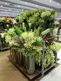Green flowers or plants for interior decoration. Tall plastic plants and flowers on display at the store stock photos
