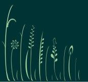 Green flowers, vector Stock Photos