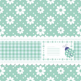 Green flowery greeting card. Cute green postcard illustration with floral background, tartan ribbon, flowery label and a ladybug stock illustration