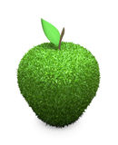 Green fluffy apple Royalty Free Stock Photos