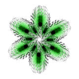 Green fluffy and twisted six-pointed star. Fluffy ornament for your design Stock Images