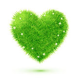 Green fluffy vector grass eco heart. With chamomiles Royalty Free Stock Image