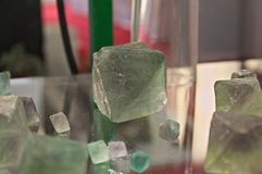 Green Fluorite Natural Octahedron Crystals on glass table.  Royalty Free Stock Photos