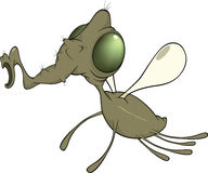 Green fly cartoon Royalty Free Stock Image