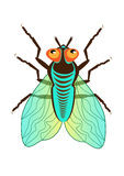 Green fly. With red eyes and translucent wings stock illustration