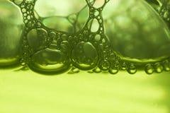 Green foam Royalty Free Stock Photo