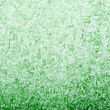 Green foam texture Royalty Free Stock Photos