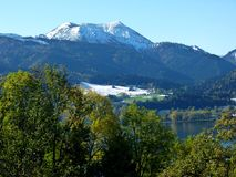 Southern german landscape with trees in the foreground - a lake and snow-covered mountains as a back-ground 2. Green foliage in front of blue-blue mountain and royalty free stock images