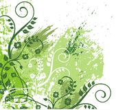 Green foliage illustration Stock Image